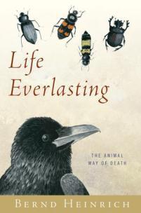 Bernd Heinrich - Life Everalsting