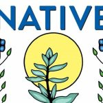 Kaitlin Curtice - Native - Identity, Belonging & Rediscovering God - Feature Review