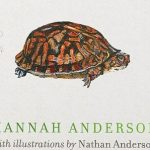 Hannah Anderson - Turning of Days [Excerpt - Sneak Peek!]
